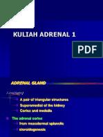 ADRENAL 1.ppt