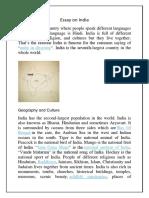 Essay on India.docx