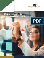 Organizaciones agiles - Proyectos