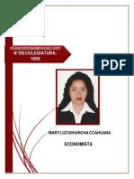 CV Mary Sihuincha