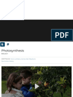 photosynthesis | Importance, Process, Cycle, Reactions, & Facts | Britannica