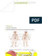 Musculoskeletal System Lecture 9