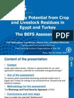 Iea Fao Workshop_task 43_befs Presentation_11oct2018_v2 Lr