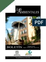 PDF Cerros Quinini