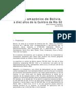 Bosque_amazonico_Bolivia2002