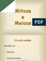 Aula - Mitose e Meiose