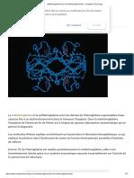 Méthémoglobinémies Et Sulfhémoglobinémies » Analytical Toxicology