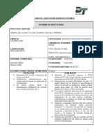 Informe Auditoria Soldesp (Dia 14-02-2018)