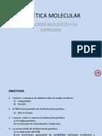Copia de Genetica Molecular ESP