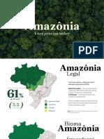 Amazonia - FIESP 2019