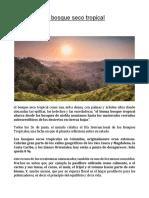 El Bosque Seco Tropical