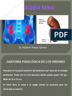 04- Fisiologia Renal