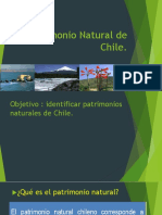 Patrimonio Natural de Chile