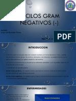 Bacilos Gram Negativos (-)
