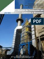 Análise de Combustão em Caldeiras a Biomassa