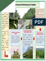 Areas Naturales Protegidas de Tumbes