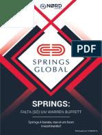 Relatório de investimento na Springs Global