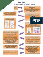 ESQUEMA DE TRATAMENTO - limpeza áurica.pdf