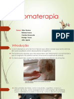 Aromaterapia Trabalho Fisiologia 1