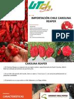 Presentacion importacion