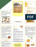 Triptico-salud-y-alimentacion-convertido.docx