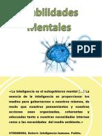 Habilidades mentales.pdf
