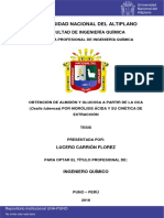Tesis oca Carrión_Florez_Lucero.pdf