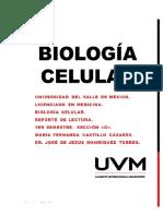 ReportedelecturaARN&ADN.pdf