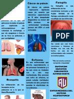 enfermedad del sistema respiratorio