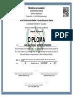 DIPLOMA_1224002245_2050412_08112019074501