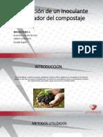 Generación de un inoculante acelerador del compostaje-1.pptx