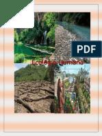 Unidad 3 - Promoción de La Salud, Convivencia y Cuidado Ambiental