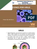 Clase de Infecciones Por Virus