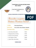 Monografia embriologia SNC.docx