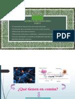 Teorico 10 Sistema Endocrino