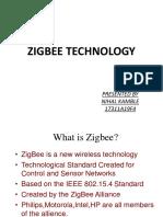 zigbee 19f4