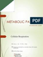 Metabolic Pathways2