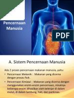 ppt biokimia pencernaan kelompok 7.pptx
