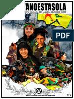 Rojavanoestasolablog1.pdf