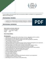 ccna example resume