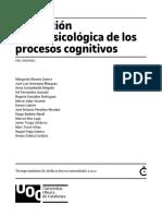 Ev. Nps de Los Procesos Cognitivos