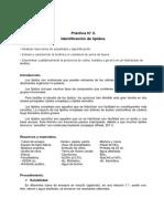 Informe Identificación de Lípidos