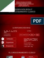 Laminas de La Reflexologia