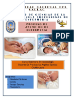 Proceso de Atencion de Enfermeria (Word)