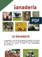 la ganaderia en bolivia