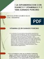 Efectos de La Suplementacion Con Selenio Organico y (2)