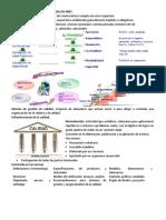 Normas de Gestión de Calidad Familia ISO 9001