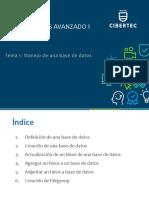 BDA I _Tema 1_ PPT.pdf