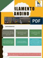P.ANDINO
