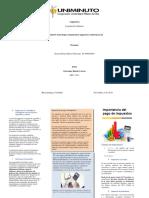 folleto importancia de los impuestos.docx